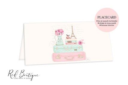 placecard chic roz cu paris si flori roz pe valiza cu loc pentru bani si nume invitati