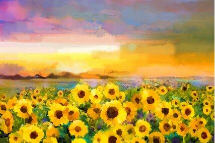 fundal foto cu floarea soarelui